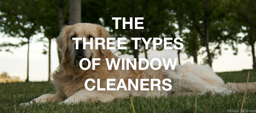 Three Types of Window Cleaners