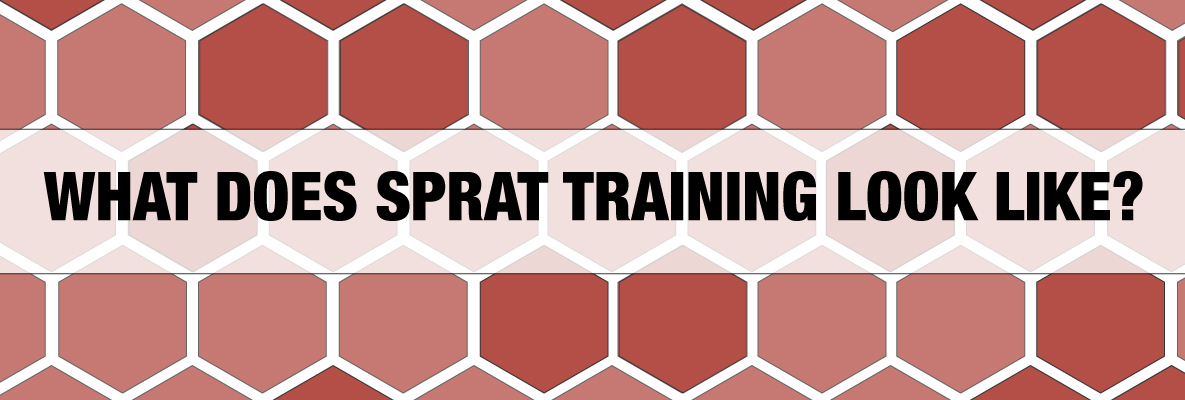 What does SPRAT training look like?